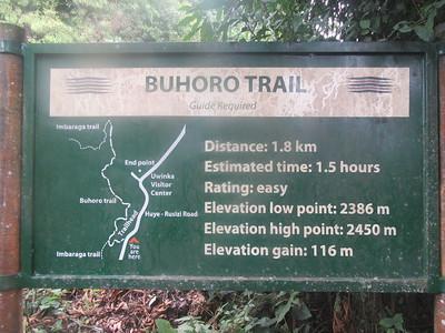 038_Nyungwe National Park  Buhoro Trail