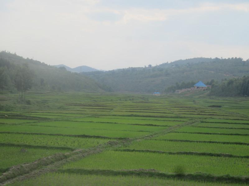011_From the Burundi Border to Nyungwe National Park