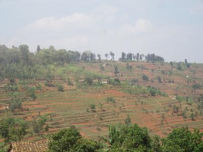 009_From the Burundi Border to Nyungwe National Park