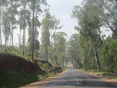 010_From the Burundi Border to Nyungwe National Park