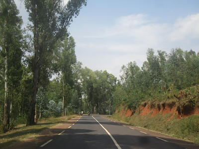 006_From the Burundi Border to Nyungwe National Park