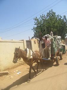 018_Khartoum  Omdurman  Old Souq Market  Donkey delivery