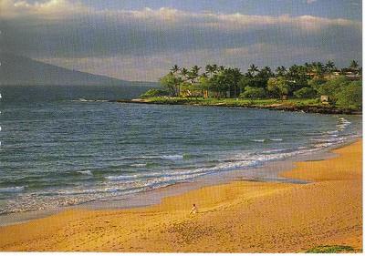 11_Maui_Wailea_Beach_Miles