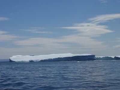 349_St  Anthony  Iceberg Alley Trail
