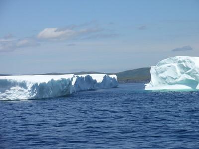 339_St  Anthony  Iceberg Alley Trail