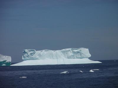 336_St  Anthony  Iceberg Alley Trail