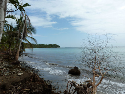 260_Cahuita National Park