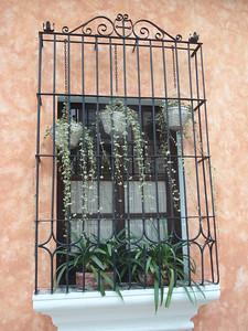 036  Antigua  Windows