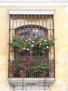 034  Antigua  Windows