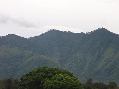 010  Antigua  Countryside