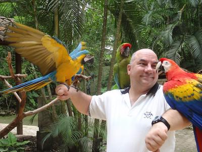 021  Copan  Macaw Mountain  The Aviary  JDP