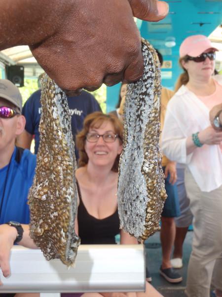 015_Great Stirrup Cay  Marine Life Encounter Eco Boat Tour  Luce