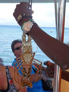 17_Haiti  Labadee  Carribean Sea  Seafood