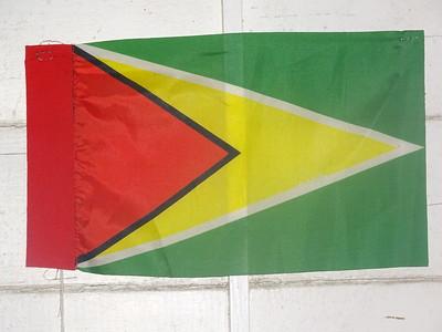 005_Guyana  The Golden Arrowhead National Flag