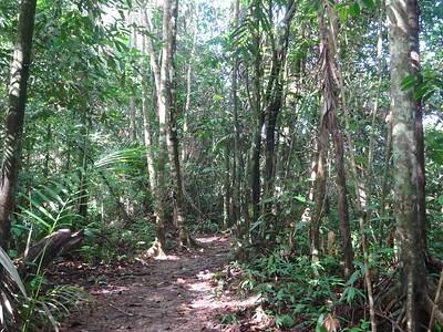 100_Baganara Island Resort, Nature Trail