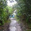 130_Kaieteur National Park  We walk trough a tropical gorge