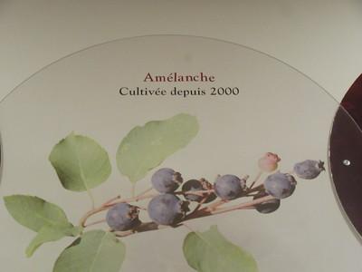 013_Isle-aux-Coudres