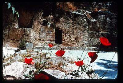 08_Jerusalem_Le_jardin_du_Tombeau