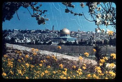 06_Jerusalem_La_vieille_ville_du_Mont_des_Oliviers