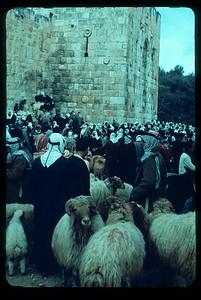12_Jerusalem_Pres_de_Vieille_Ville_Marche_aux_bestiaux