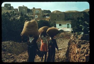 35_Arabs_of_The_Holy_Land_Arabes_revenant_des_champs