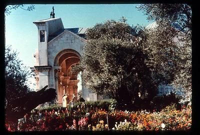 24_Jerusalem_Le_jardin_de_Gethsemane