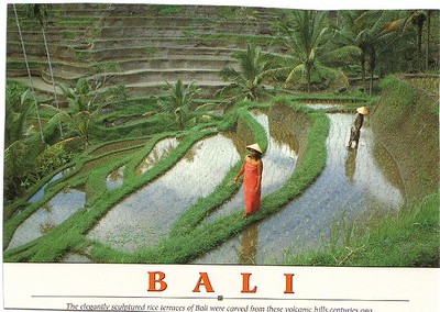 02_Bali_Rice_Terraces_carved_from_volcanic_hills