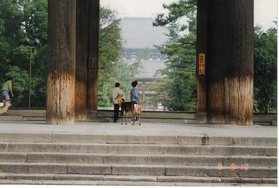 07_Kyoto_Tres_vieux_Temple_avec_cerfs