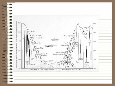 06_Trekking _to Everest_Base_Camp