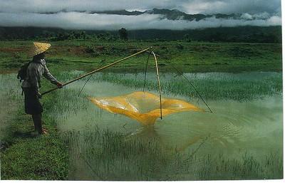 16_Luang_Pradang_Mekong_River_Net_Fishing