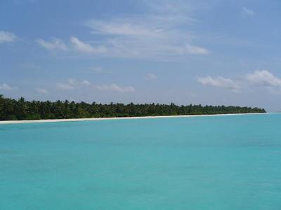 17_Sun_Island_cabins_sont_derriere_les_cocotiers