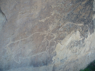 015_Gobustan_Rock_Carvings_of_Animals