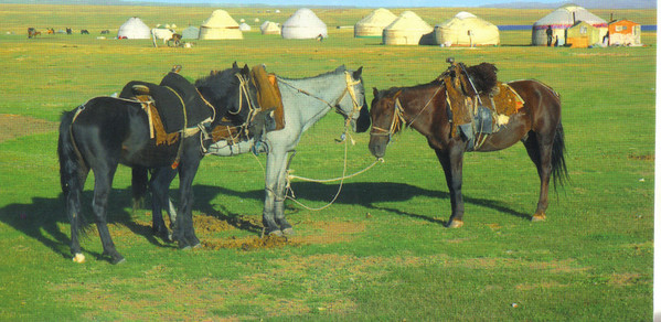 025_Camp of Nomads