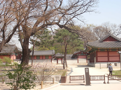 051_Seoul City  Changdeokgung Palace  UNESCO  Design exceptionally in harmony with the natural environment jpg