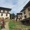 331_Wangdue Valley  Newari Village  4000 people, 13 person per house