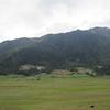 387_Phobjikha Valley