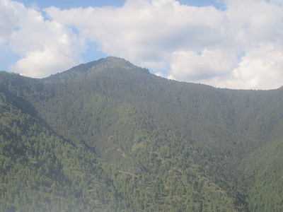 021_Paro Valley  Set in what is considered to be the most beautiful of the main valleys  2280m