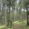 390_Phobjikha Valley  Gangtay Nature Trail  4 km  Elevation 2,900 meters