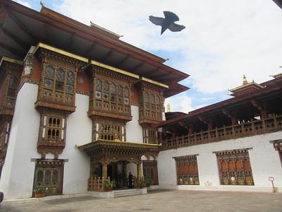 303_Punakha Dzong (Monastery-Fortress)