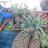 106_Paro  Central Market  Pineapples