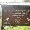 366_Phobjikha Valley  Black-Necked Crane Visitor Center