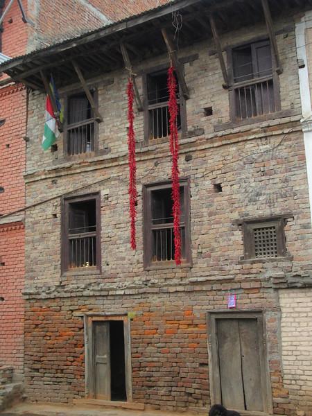 074_Karyabinayak Municipality  Chilies drying  Hanging everywhere, over balconies, etc