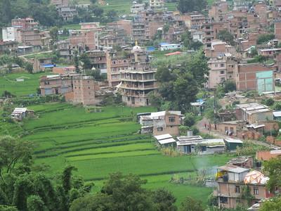 015_Bungamati  Terraced Rice Fields