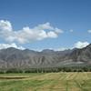 361_Near Shalu Gompa (Monastery)