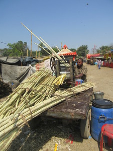 381_Village Fair  Sugar Cane Vendor  Crushing the cane and extracting Juice