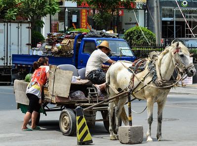 Horse Drawn Watermelon Cart in Beijing