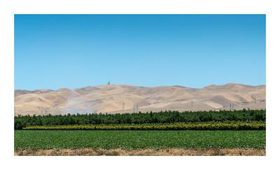 California_160719_DSB2010