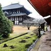 Todai-ji, Daibutsu-den