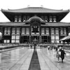 Todai-ji Daibutsu-den. The largest wooden building in the world.