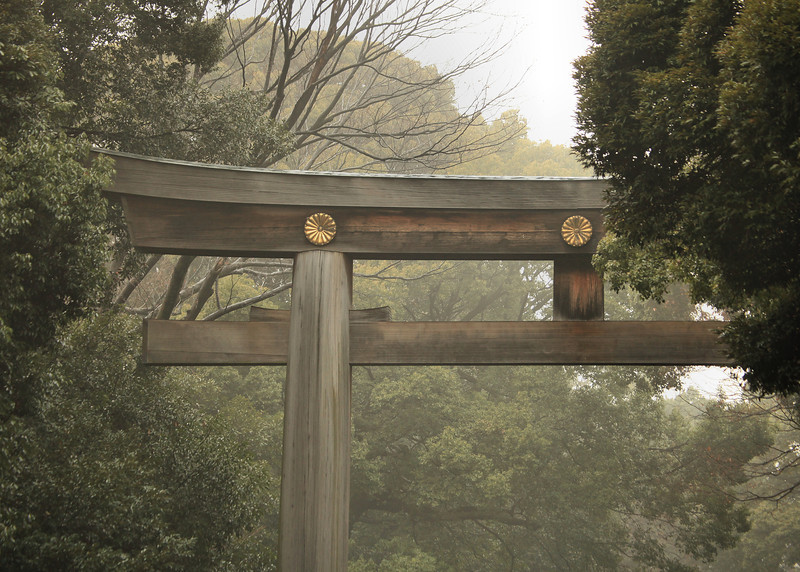 Tori gate, Meiji-jingu park
